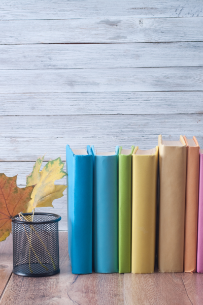 Colorful books lined up in front of a grey shiplap wall beside a pencil holder and leaf